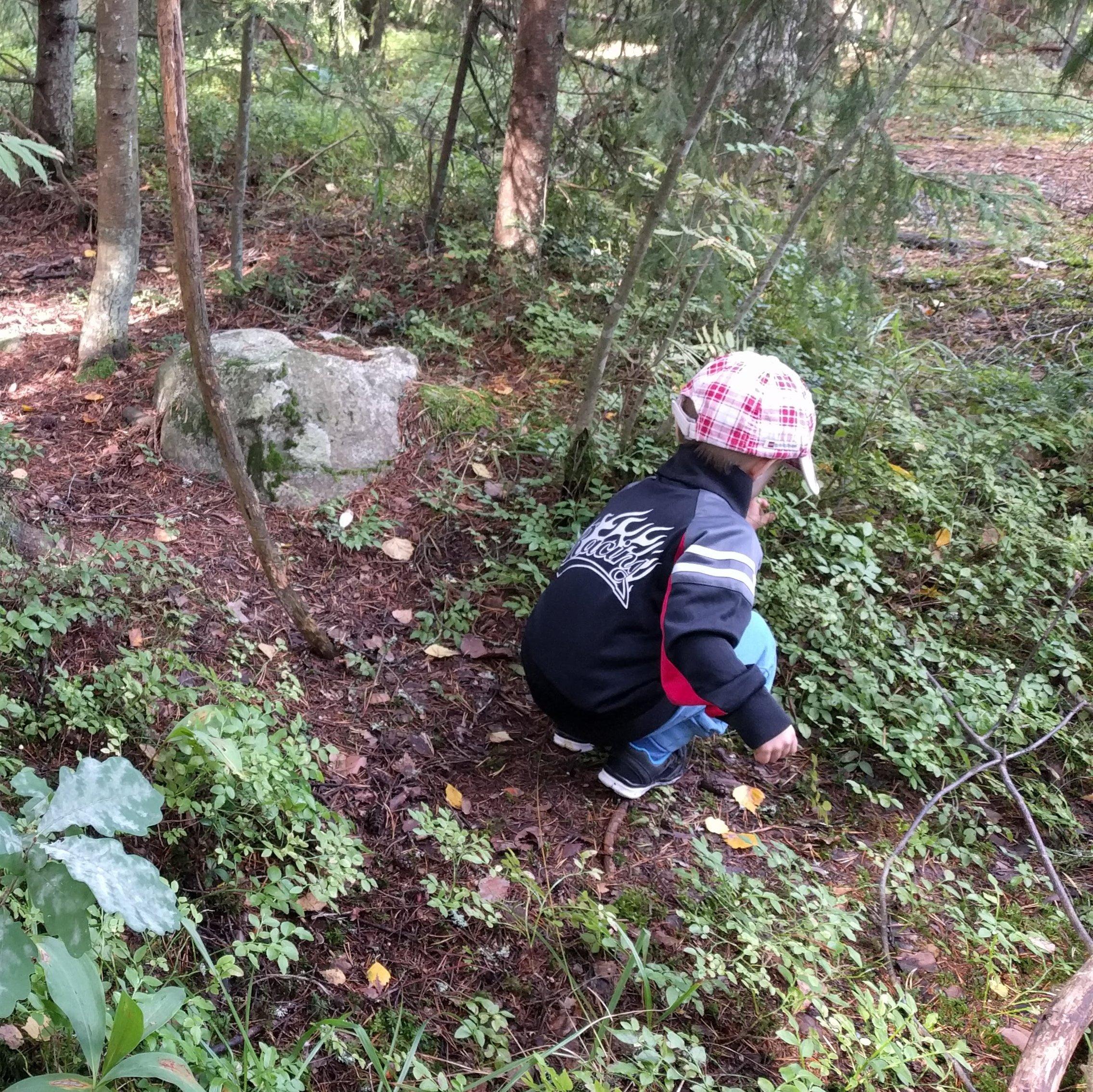 kaksi lasta tutkivat metsän kasveja kyyristyneinä maata kohti